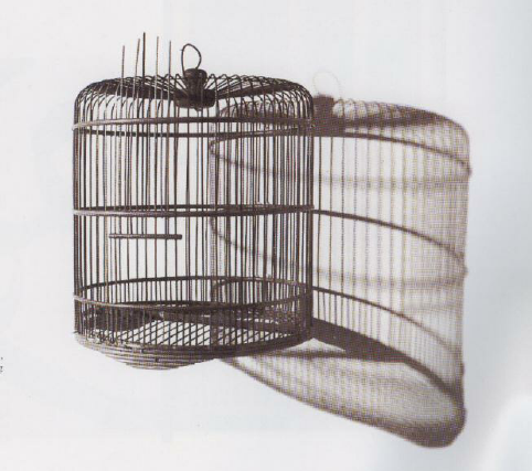 Figure-2-Redza-Piyadasa-and-Sulaiman-Esa-Empty-Bird-Cage-After-Rele-ase-of-Bird