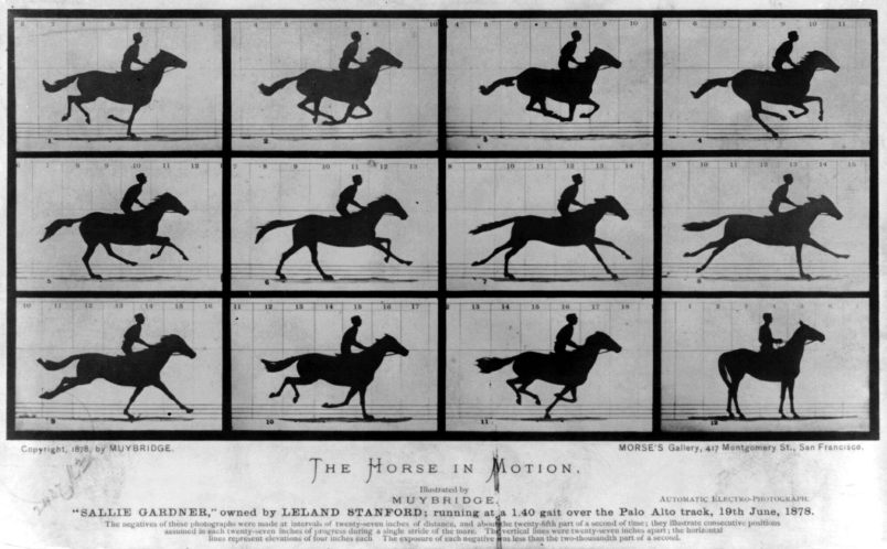 6-Muybridge The Horse in_Motion