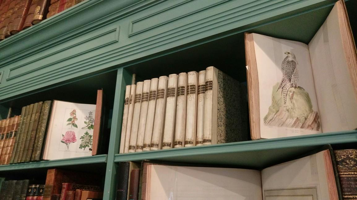 關於文物買賣與古書商生態雜談(一)