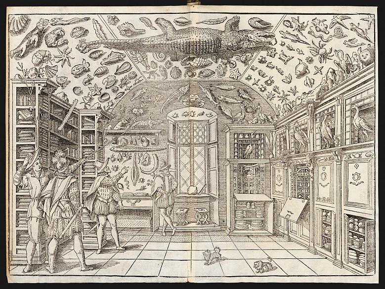 das_museum_des_ferrante_imperato_1599_original