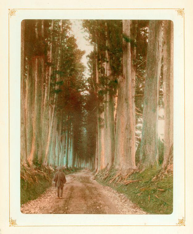 佚名,《日光今市道》,1890-1909。蛋白相紙手工上色。(紐約公共圖書館藏)